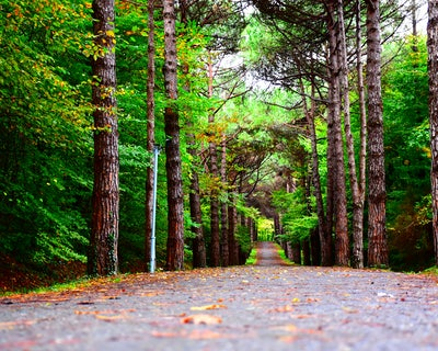 JobOn-Tour Doetinchem   Jouw weg in de natuur